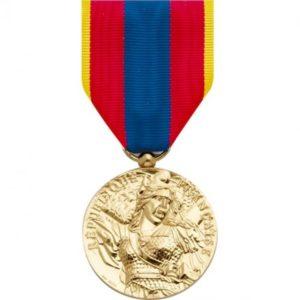 Médaille ordonnance défense nationale or DMB